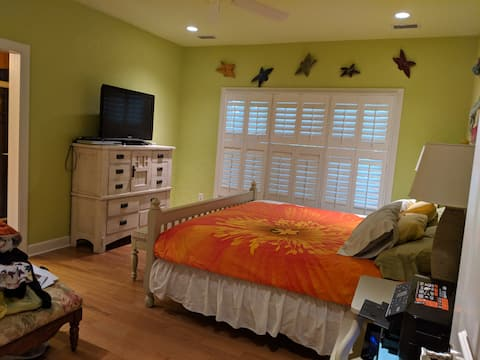 Dog friendly bright rooms, close to beach