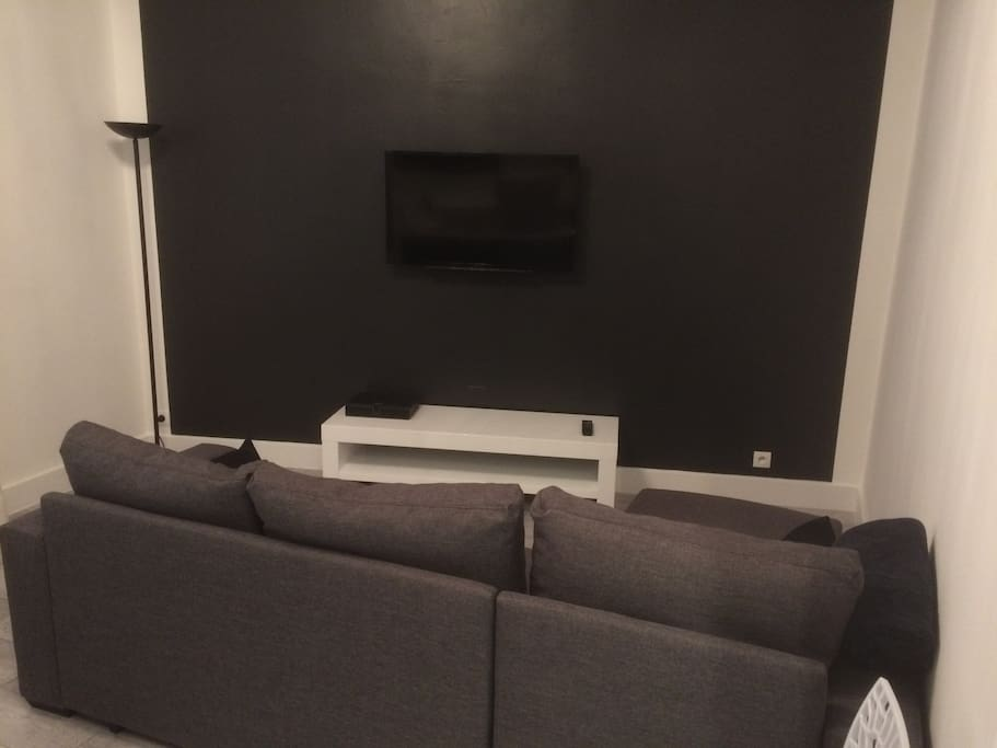 TV écran plat. Canapé-lit.