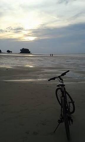 near beach 400 m by walking  or bike