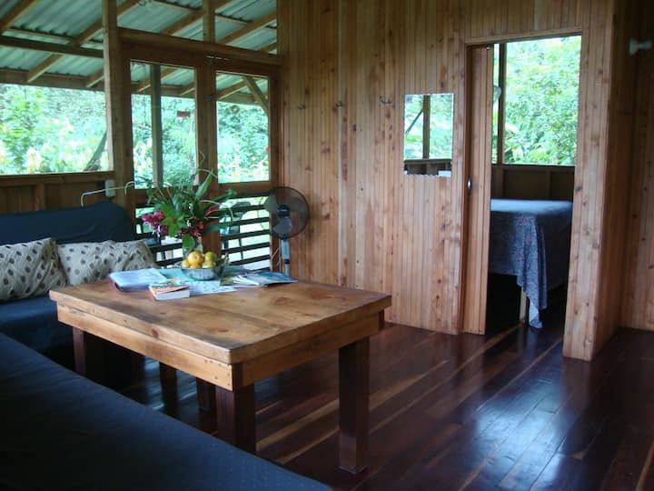 Howler Monkey Cabin! A Cool Rainforest Retreat!
