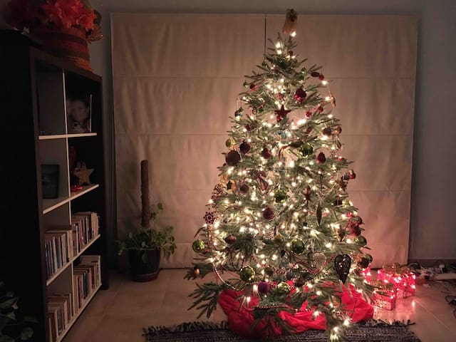 ...and at Christmas time you can be sure of a lovely large tree!