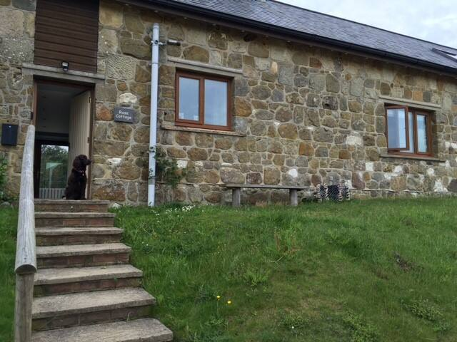 Beautiful cottage in rural location - Shorwell
