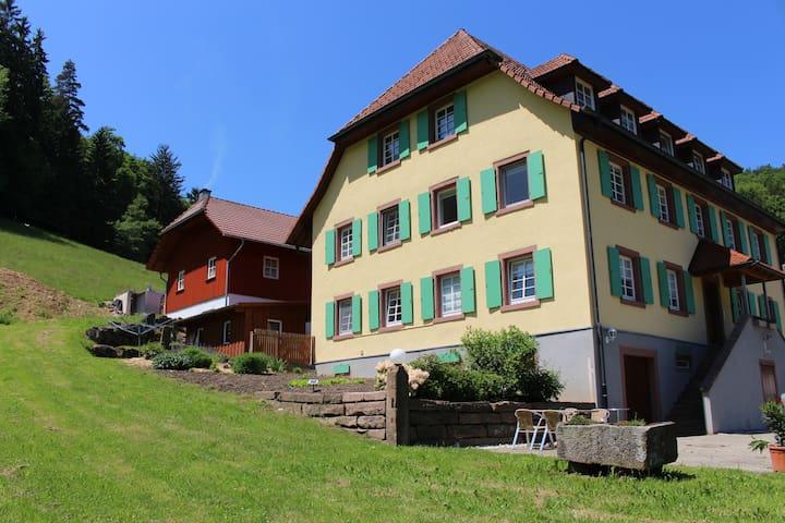 Ferienwohnungen im Schwarzwald, Nähe Europapark - Schuttertal - Wohnung