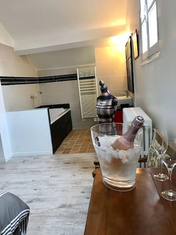 chambre/salle de bain dans une grande demeurre - Saumur - Bed & Breakfast
