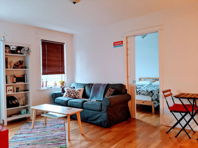 Spacious/Bright Plateau Sublet Feb-Mar