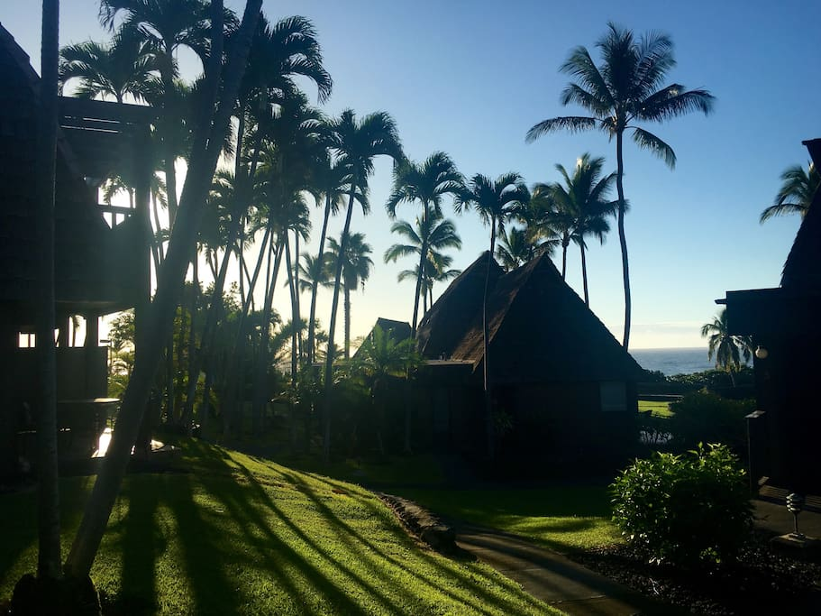 Good morning sun!  view from the lanai