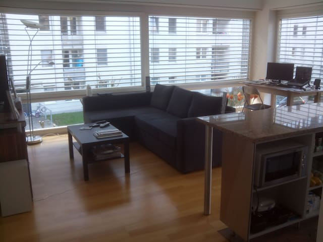 Cozy apartment in Feldkirch - Feldkirch - Lejlighed