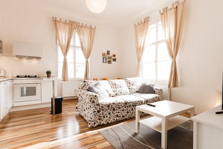 Bright Apartment Close to the Old Town! - Praha
