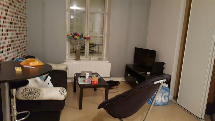 Appartement centre ville - Charleville-Mézières - Byt