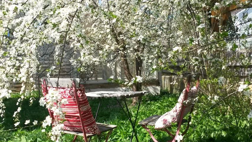 Sitzplatz im Garten für unsere Gäste