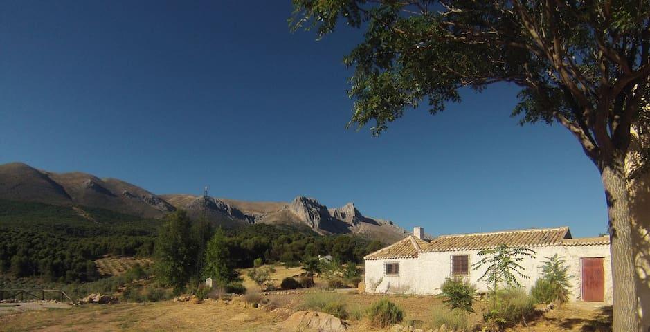 Un cortijo con vistas - กรานาดา - บ้าน