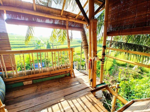 Bali unique Treehouse, the dream come true