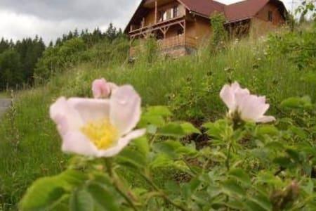 Ubytování pod Březím- rekreace blízko lesa - Prostřední Bečva