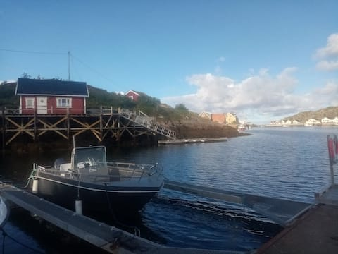 Viking Fisher Lofoten - Your fishing adventure