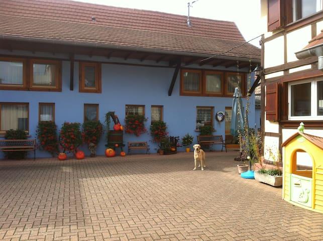 Chambres d'hôtes Mélodies d'Alsace+ petit déjeuner