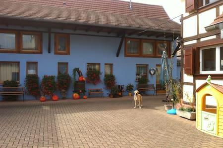 Chambres d'hôtes Mélodies d'Alsace - Lipsheim