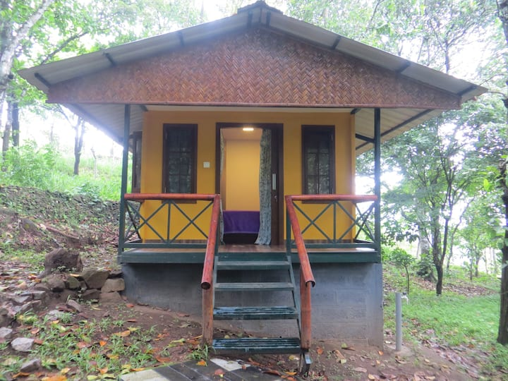 Forest View Deluxe Cottage Suite (Cozy)