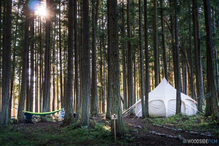Lotus Belle 16' Tent at Mount Baker Farm