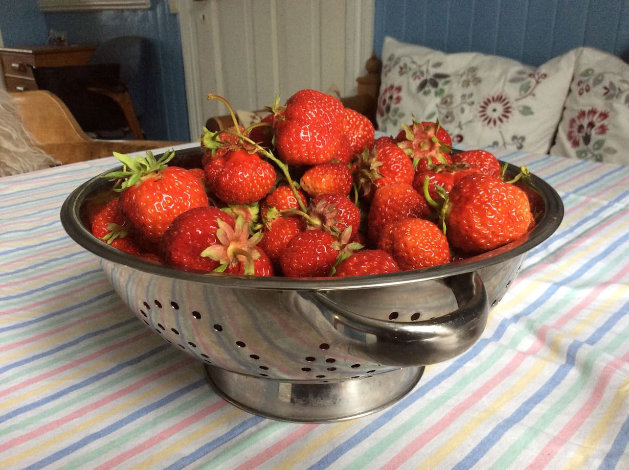 Strawberry from our own garden