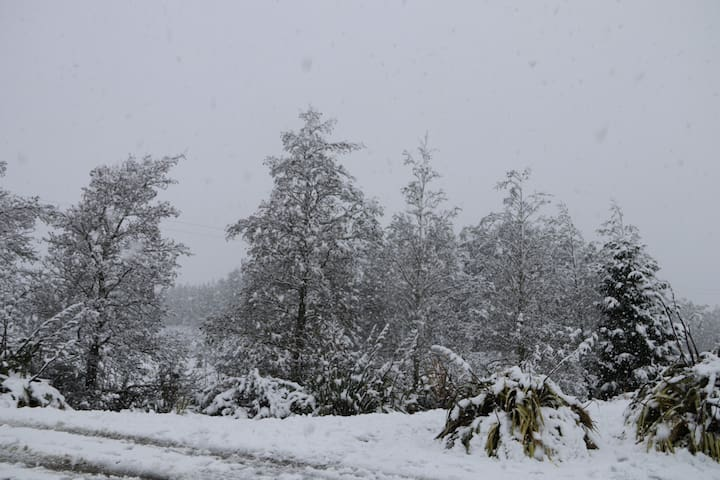 Snow! A rare event in Te Anau