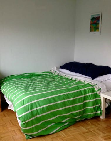Studio Apartment with Queen Bed in Downtown Ottawa