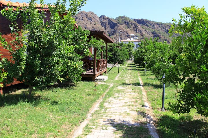 Natural lemon and pomegranate garden - Ulupınar Köyü - Villa