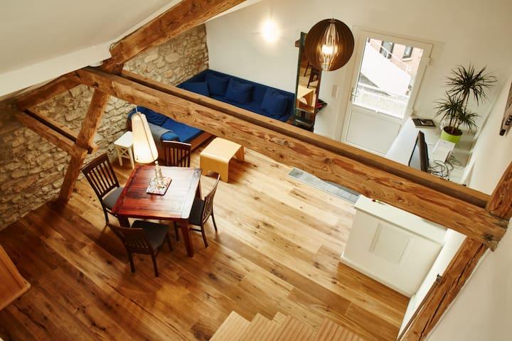 charmantes Apartment im Aachener Süden - Aken - Appartement
