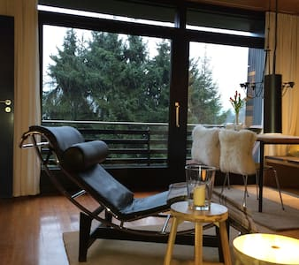 midcentury modern - Waldbröl