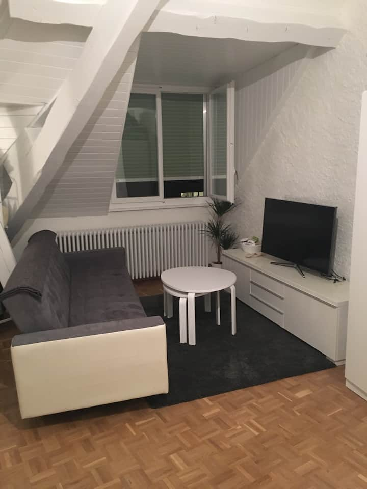Cozy Studio close to Cornavin Train Station