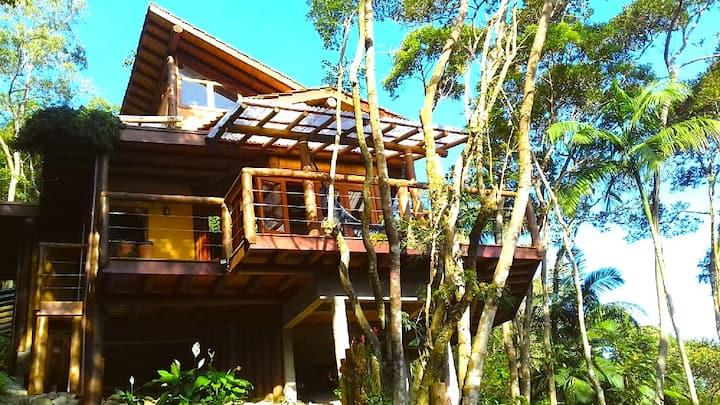 Casa na Árvore (The Tree House) Florianópolis