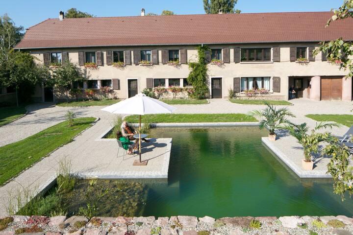 """Schoppenwihr Apartment """"L'ECURIE"""" - Ostheim - Appartement"""
