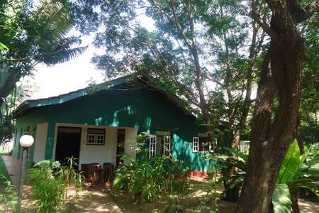 Mihipiya GUEST HOUSE - Habarana - Natuur/eco-lodge