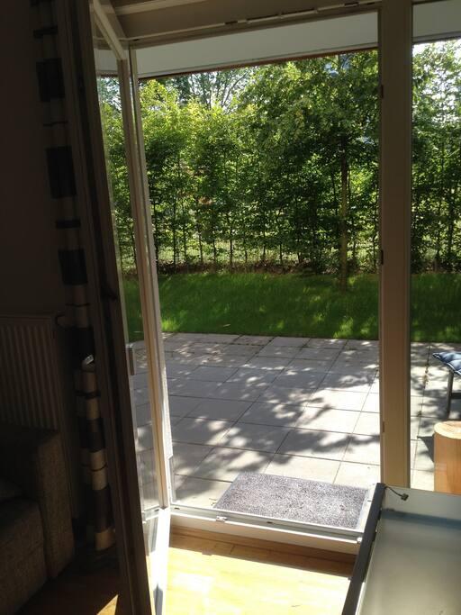 helle wohnung mit garten in zentraler lage wohnungen zur miete in darmstadt hessen deutschland. Black Bedroom Furniture Sets. Home Design Ideas