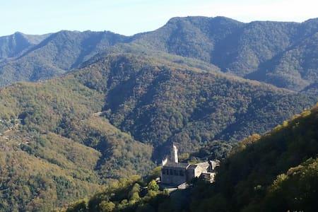 Charme de l'authentique en Castagniccia - Piedicroce - Appartement