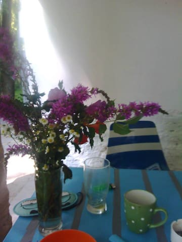 Ground terace and fresh flowers you can find during your walks...