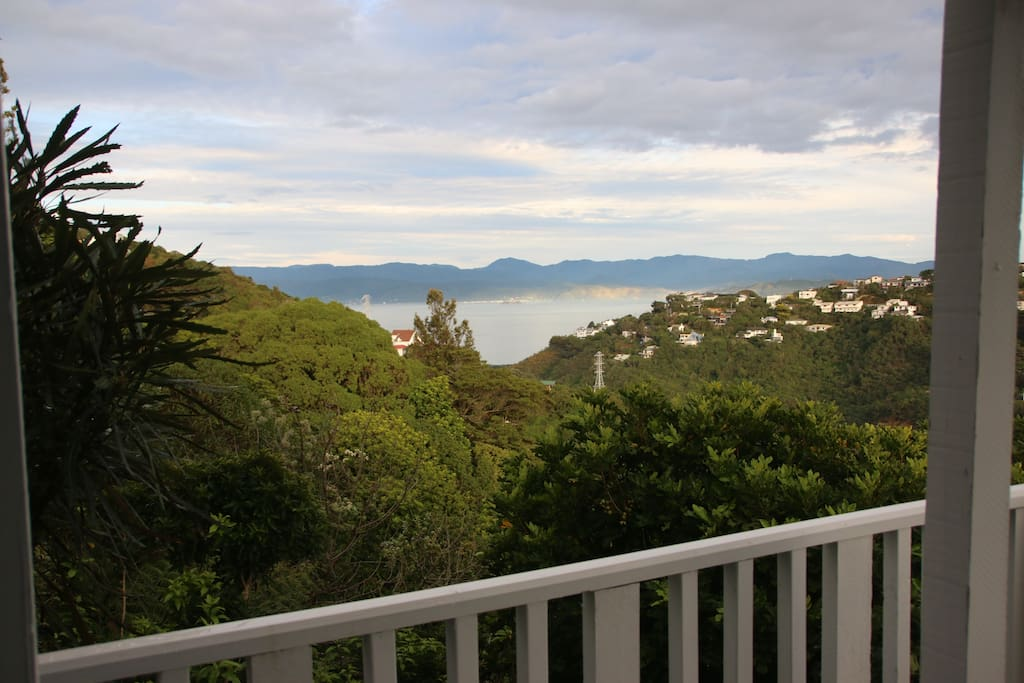 Wellington harbour, view from private deck.