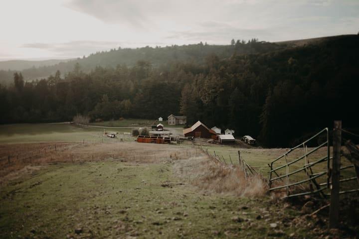 Getaway Farm Home