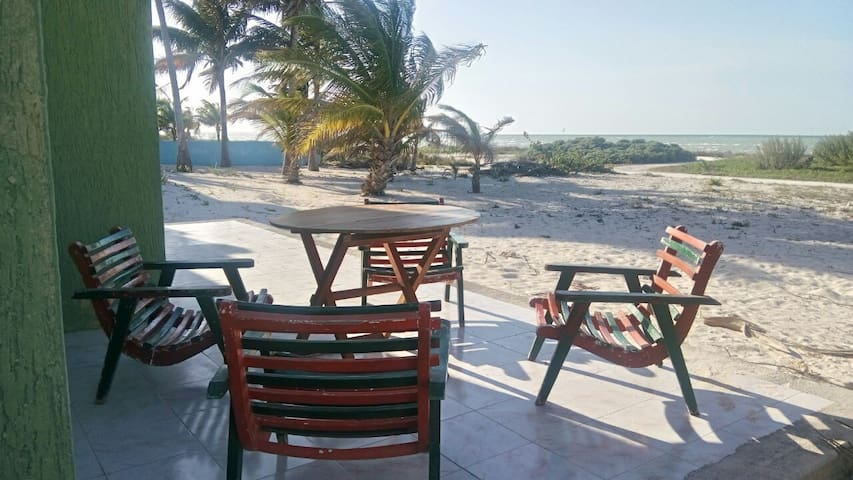 Beautiful Beachfront Home! - Progreso - House