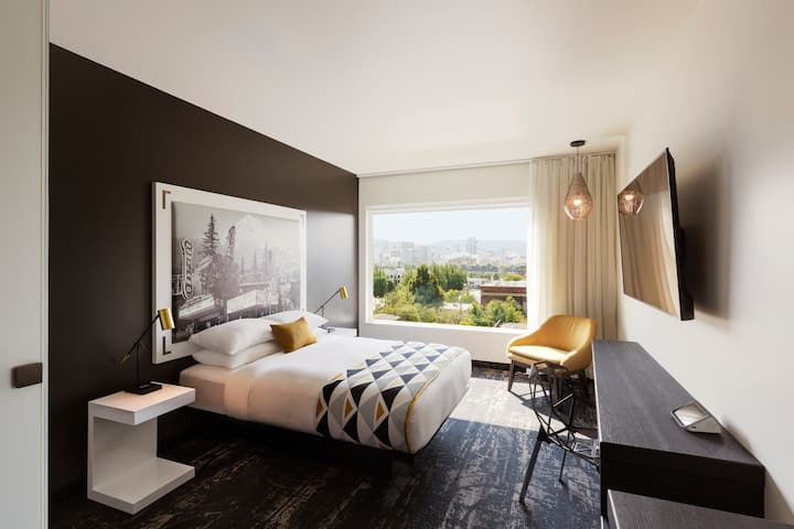 The X - Dog Friendly Boutique Hotel with City Views