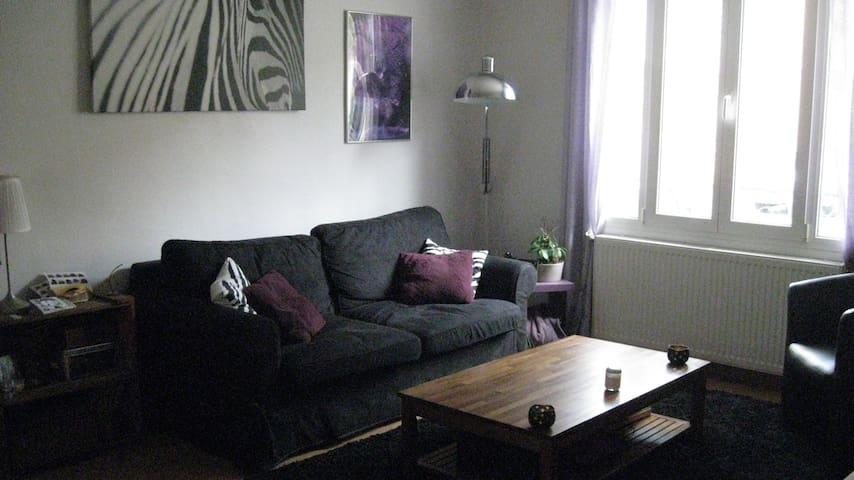 Appartement t3 avec jardin - Villers-lès-Nancy - Квартира