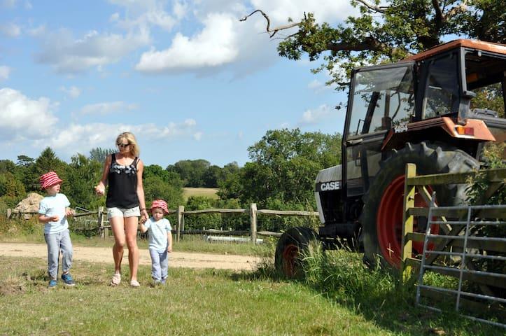 EXPLORE THE FARM