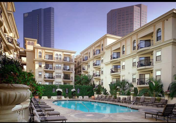 DOWNTOWN LA Condo (Staples/LA Live)*