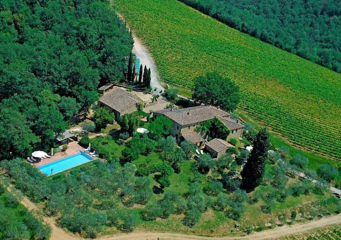 Aussenansicht von Brancaia mit grosszügigem Garten und Pool
