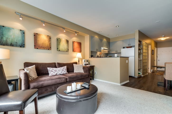 Newly renovated views to town park - Telluride - Flat
