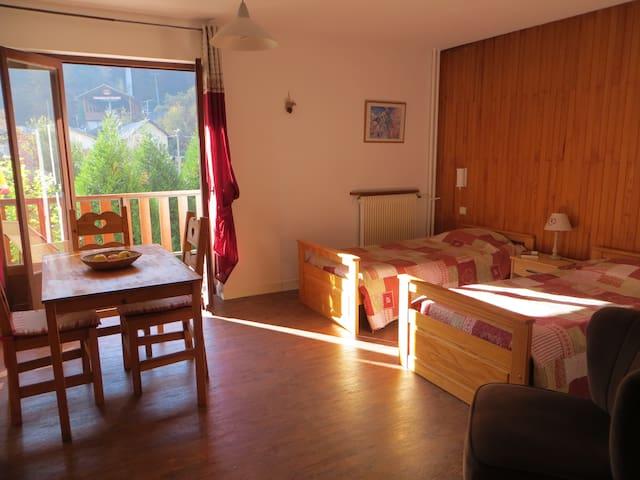 grand studio au calme avec terrasse plein centre - Brides-les-Bains - Apartment