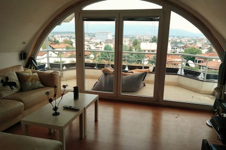 Spacious Rooftop Apartment