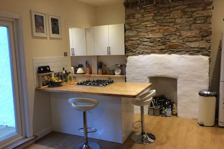 Spacious town house in the centre of Totnes - Totnes