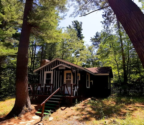 2 Bedroom Chalet under Pine Trees with fireplace