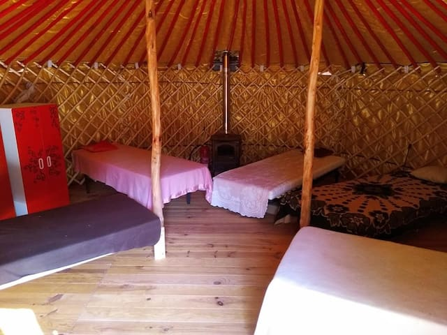 Dorm Bed in Yurt in Nature at our Eco Community