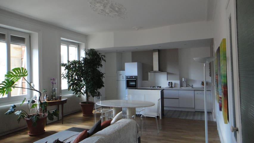 chambre près du centre et des sites culturels - Saint-Étienne - Apartamento
